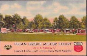 NC New Bern Pecan Grove Motor Court