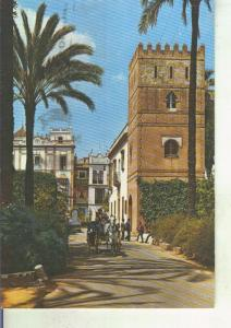 Postal 014296: Barrio de Santa Cruz de Sevilla
