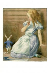 White Rabbit Gloves Alice In Wonderland 1911 Book Postcard