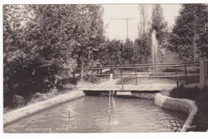 RP, Small Bridge, Onekama, Michigan, PU-1925