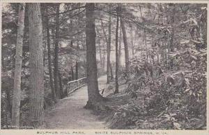 West Virginia White Sulphur Springs Sulphur Hill Park Albertype