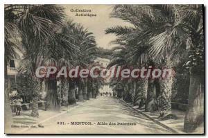 Old Postcard Menton Allee des Palmiers