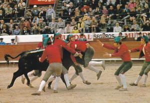 Bullfight, LISBOA, Portugal, 50-70's