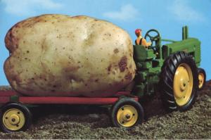Potato On Toy Tractor Prince Edward Island PE PEI Tourism c1979 Postcard D11