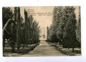 171151 Adjara Georgia BATUMI Boulevard Cypress alley Vintage