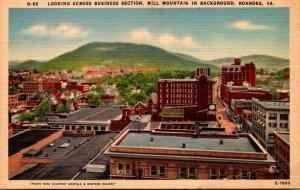 Virginia Roanoke Looking Across BUsiness Section