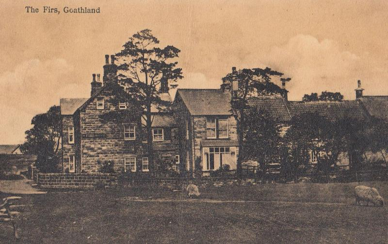 The Firs Hotel Goathland Old Postcard