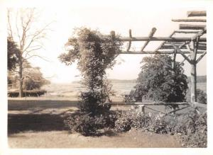 Smithtown Long Island New York Oakside Pergola Real Photo Snapshot JE229735