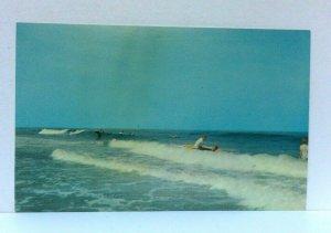 Fenwick Island Delaware Riding The Breakers Atlantic Ocean Postcard