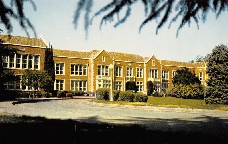 Chico California~`Pine Tree & Shadow View of High School~Circle Drive 1950s PC