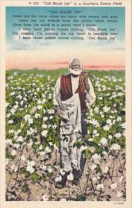 Black Americana Old Black Joe In A Southern Cotton Field