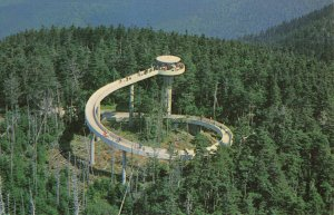 Postcard Observation Tower Atop Clingmans Dome Great Smoky Mountains
