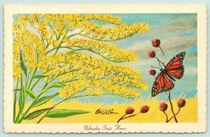 Nebraska State Flower~Golden Rod Close Up~Monarch Butterfly~1967 Artist Ken Haag