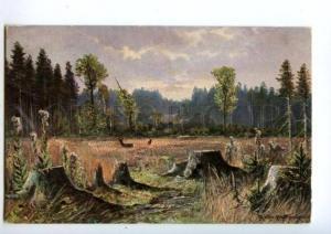 132441 HUNT Deer & Mushrooms by MULLER vintage PC