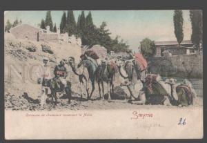 098053 TURKEY SMYRNE-IZMIR CAMEL CARAVAN Vintage tinted PC