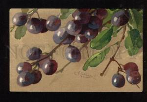 048881 PLUMS on Tree by C. KLEIN vintage GOM 1672 PC