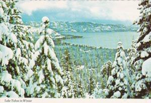 California Lake Tahoe In Winter