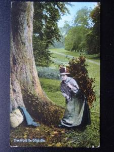 Social History WOMAN COLLECTING WOOD Free From the City's Din c1909 Postcard
