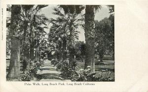 Long Beach California~Palm Walk Long Beach Park~1906 B&W Postcard