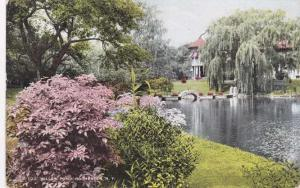View at Willow Pond, Rochester, New York - DB
