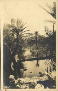 curacao, N.W.I., Landscape View, Small River Scene (1930s) Sunny Isle RPPC