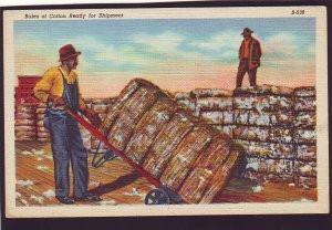 P1586 vintage unused postcard workers bales of cotton ready for shipment