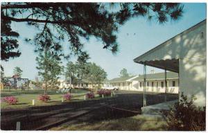 Camellia Court, Wilmington NC