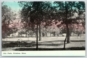 Windom MN~Flower Bed Nestled Tween Trees~City Park in Late Autumn Afternoon~1910
