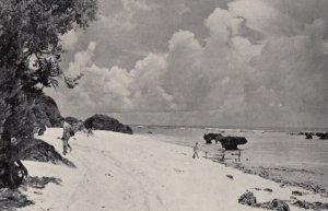 White Sands of Tarague , GUAM , 1950-60s