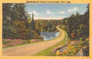 Pocomoke City Maryland Greetings Lake and Road Scenic View Postcard JA4742633