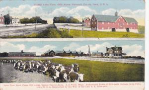 Crystal Lake Farm, Hancock County , Iowa , PU-1910