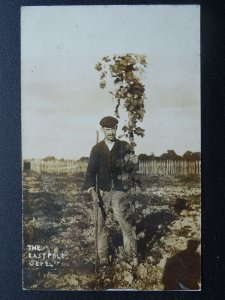 Country Farming Life Beer / Hops Theme THE LASTPOLE 24th Sept c1906 RP Postcard
