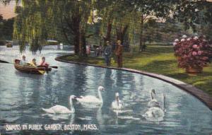 Swans in Public Garden, Boat, BOSTON, Massachusetts, 00-10's