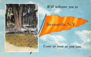 Will Welcome You to Stevenville New York~Come Soon~Pennant in Clouds~1919 PC