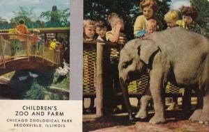 Illinois Chicago Children's Zoo Baby Elephant Chicago Zoological Park At...