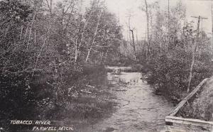 Scenic view, Tobacco River, Farwell, Michigan,  00-10s