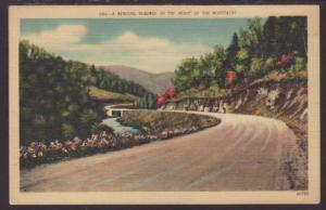 Winding Roadway in the Heart of the Mountains Postcard