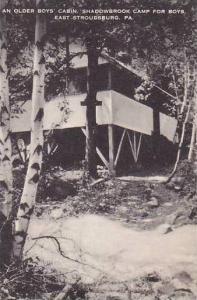 Pennsylvania East Stroudsburg An Older Boys Cabin Shadowbrook Camp For Boys A...