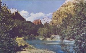 Zion National Park, Utah unused Postcard
