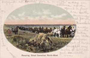 Farmers With Horses Reaping Hay In The Great Canadian Northwest 1907