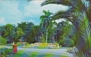 Jamaica Kingston Royal Botanical Gardens Hope