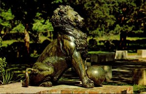 South Carolina Murrels Inlet Brookgreen Gardens The Lion