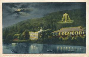 Rorick's Glen Amusement Park - Elmira NY, New York - pm 1917 - WB