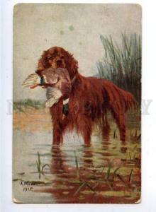 159624 Duck Hunt IRISH SETTER by MAKO Vintage Ukraine color PC