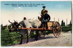 Ox Cart, Gaspe Que