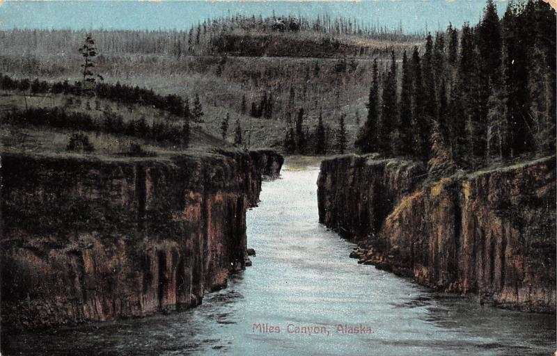 Miles Canyon Alaska~Pine Trees Along Shore~c1910 Postcard
