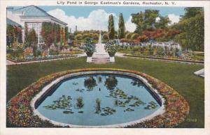 New York Rochester Lily Pond In George Eastman's Gardens 1933