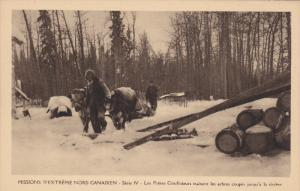 Missions D´Extreme-Nord Canadien, Les Freres Coadjuteurs trainent les arbore...