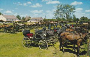 Mennonite Meeting House, Horse and Buggies Lined Up, KITCHENER-WATERLOO, Onta...