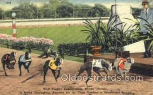 West Flagger Kennel Club, Miami Beach, FL USA Dog Racing, Old Vintage Antique...